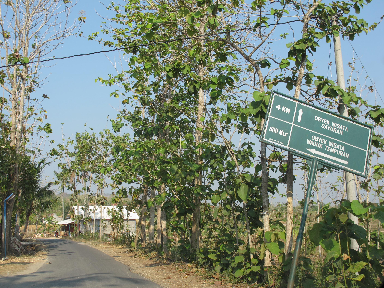 Exploring Blora Sekaleng Kopi Penunjuk Arah Wisata Sayuran Kampung Bluron