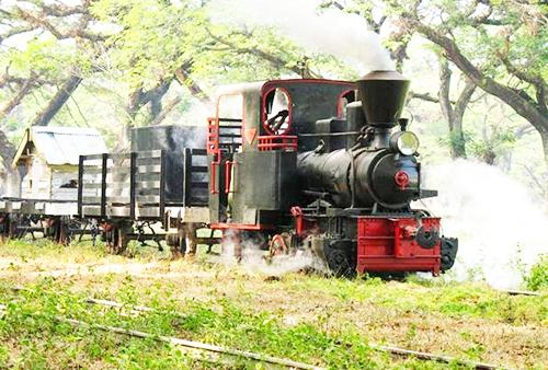 12 Destinasi Wisata Kabupaten Blora Lengkap Kereta Uap Wisatawan Dibawa