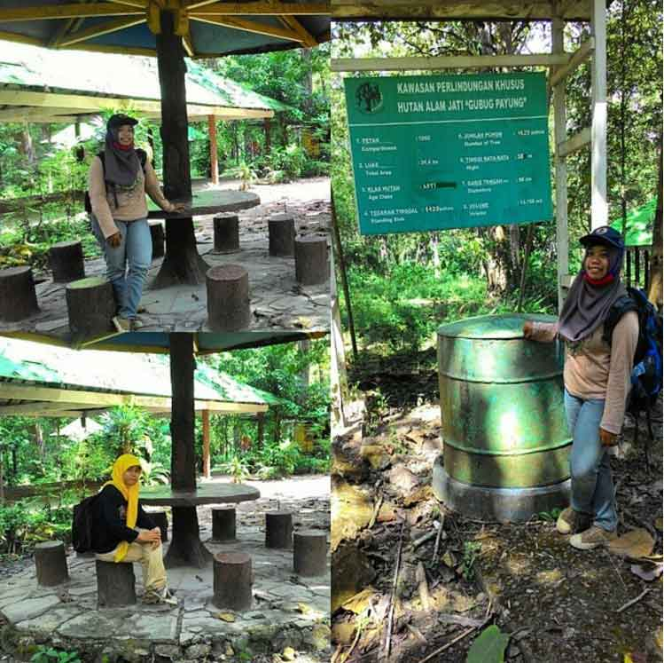 Gubug Payung Blora Mytrip123 Wisata Alam Munumen Hutan Jati Monumen