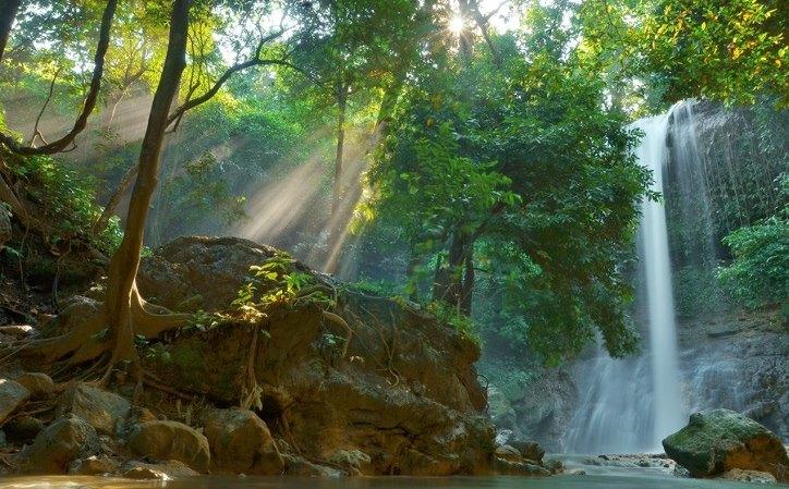March 2017 Tips Wisata Lokasi Terletak Tengah Kawasan Hutan Jati