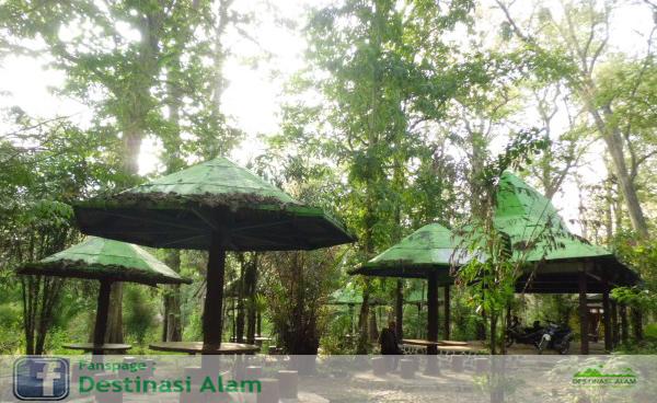 Monumen Jati Alam Blora Hutan Kab