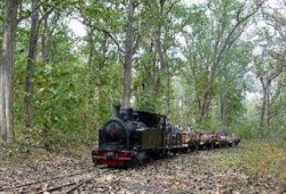 11 Tempat Tujuan Wisata Blora Jawa Tengah Ketahui Taman Budaya