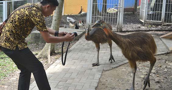 Taman Tirtonadi Blora Dilengkapi Satwa Burung Lho Foto Dinkominfo Kabupaten