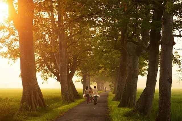 Tempat Wisata Blora Terbaru 2018 Indah Taman Budaya Seni Tirtonadi