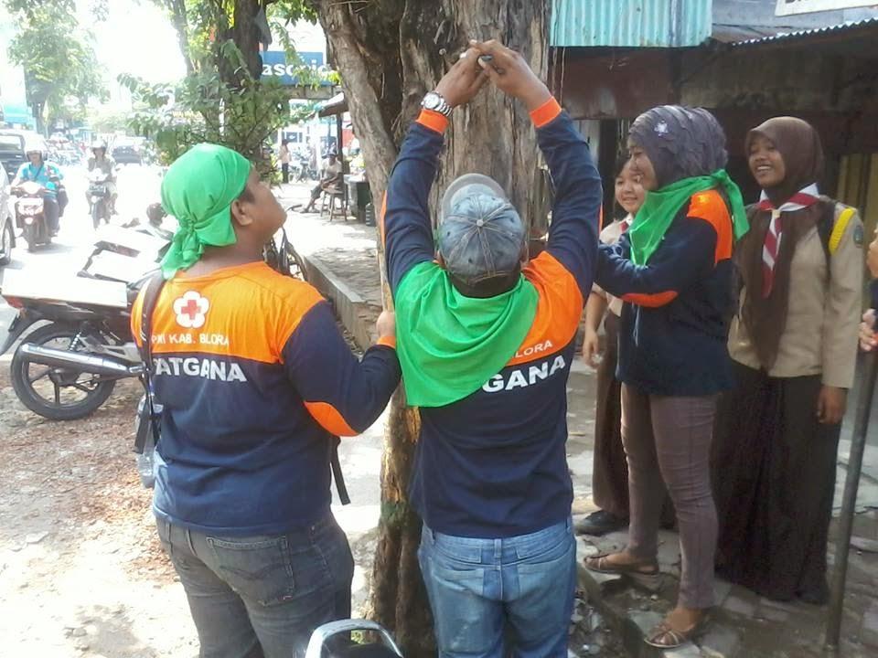 Aksi Penyelamatan Pohon Home Tersebut Dilakukan Tersebar Kawasan Tugu Ketapang