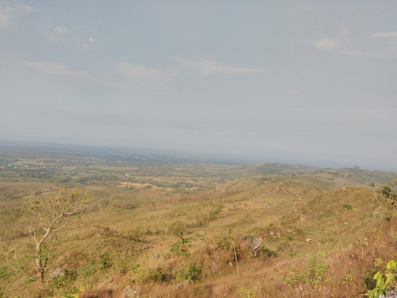 Daftar Objek Wisata Kabupaten Blora Tengah Naik Daun Updates Taman