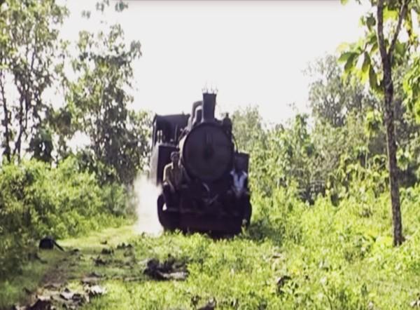 Monumen Jati Alam Kereta Tua Membelah Hutan Bloranews Lokomotif Gubug