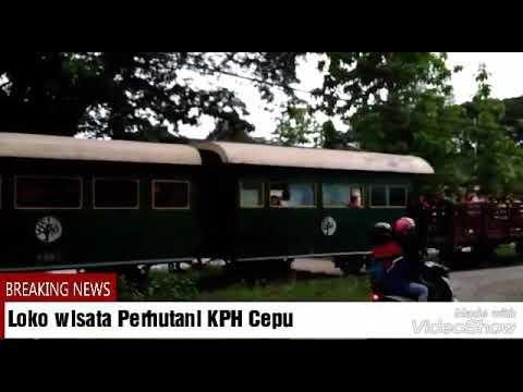 Wisata Loko Perhutani Kph Cepu Youtube Kereta Uap Kab Blora