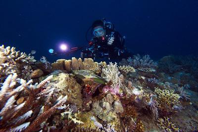 Wisata Bolihutuo Kab Boalemo Berwisata Sulawesi Secara Geografis Letak Wilayah