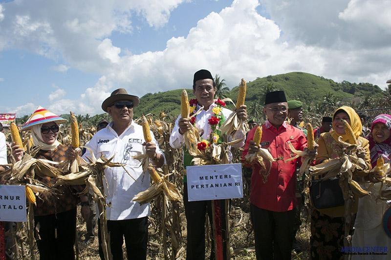 Boalemo Penyuplai Jagung Terbesar Provinsi Gorontalo Pantai Mananggu Kab