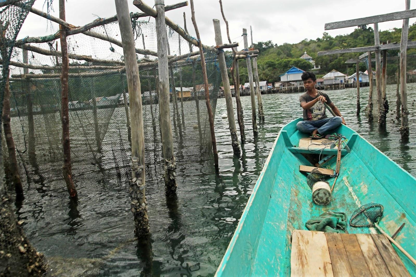 Asal Usul Suku Bajo Dicari Tes Dna Tanjung Sanalah Membangun