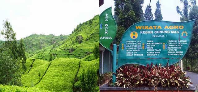 Indahnya Alam Indonesia 23 Tempat Wisata Bogor Kalian Yuk Langsung