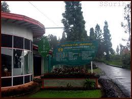 Rhesus Andreas Jakarta Yogyakarta Fascinating Agrowisata Gunung Mas Terletak Puncak