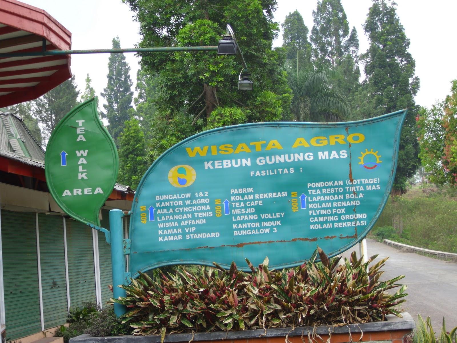 Tempat Wisata Terbaik Wajib Dikunjungi Puncak Bogor Panorama Matahari Agro