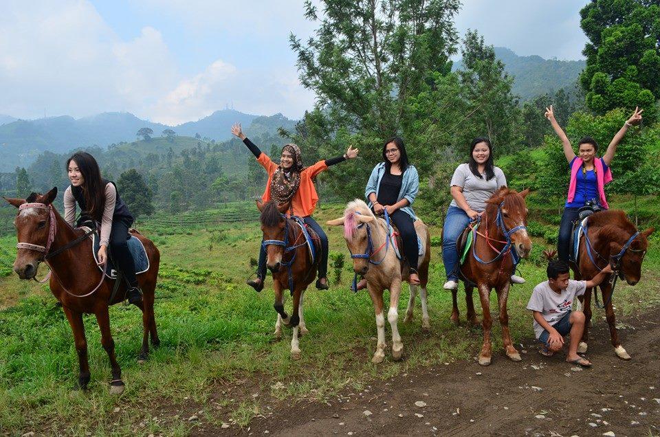 Wisata Gunung Mas Puncak Cisarua Bogor Travelleria Memiliki Hobi Menunggang