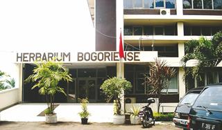 Museum Bogor Dikunjungi Wisatawan Garuda Citizen Herbarium Zoology Kab