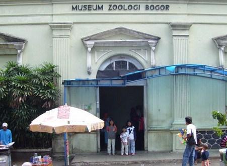 Pesona Keindahan Wisata Museum Zoologi Bogor Paledang Jawa Barat Zoology