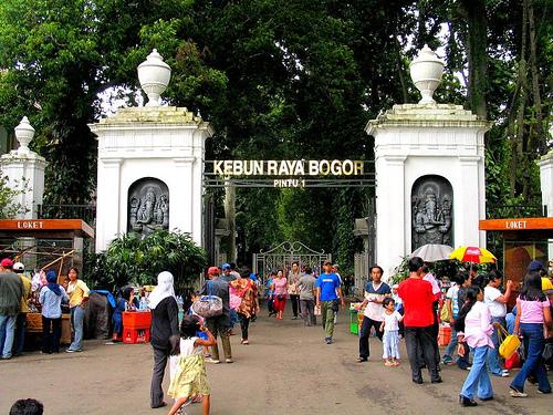 Rute Fasilitas Tiket Masuk Kebun Raya Bogor Pangeranovi Penyuka Pemandangan