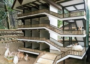 Asyik Bermain Mini Zoo Cimory Riverside Bogor Kab