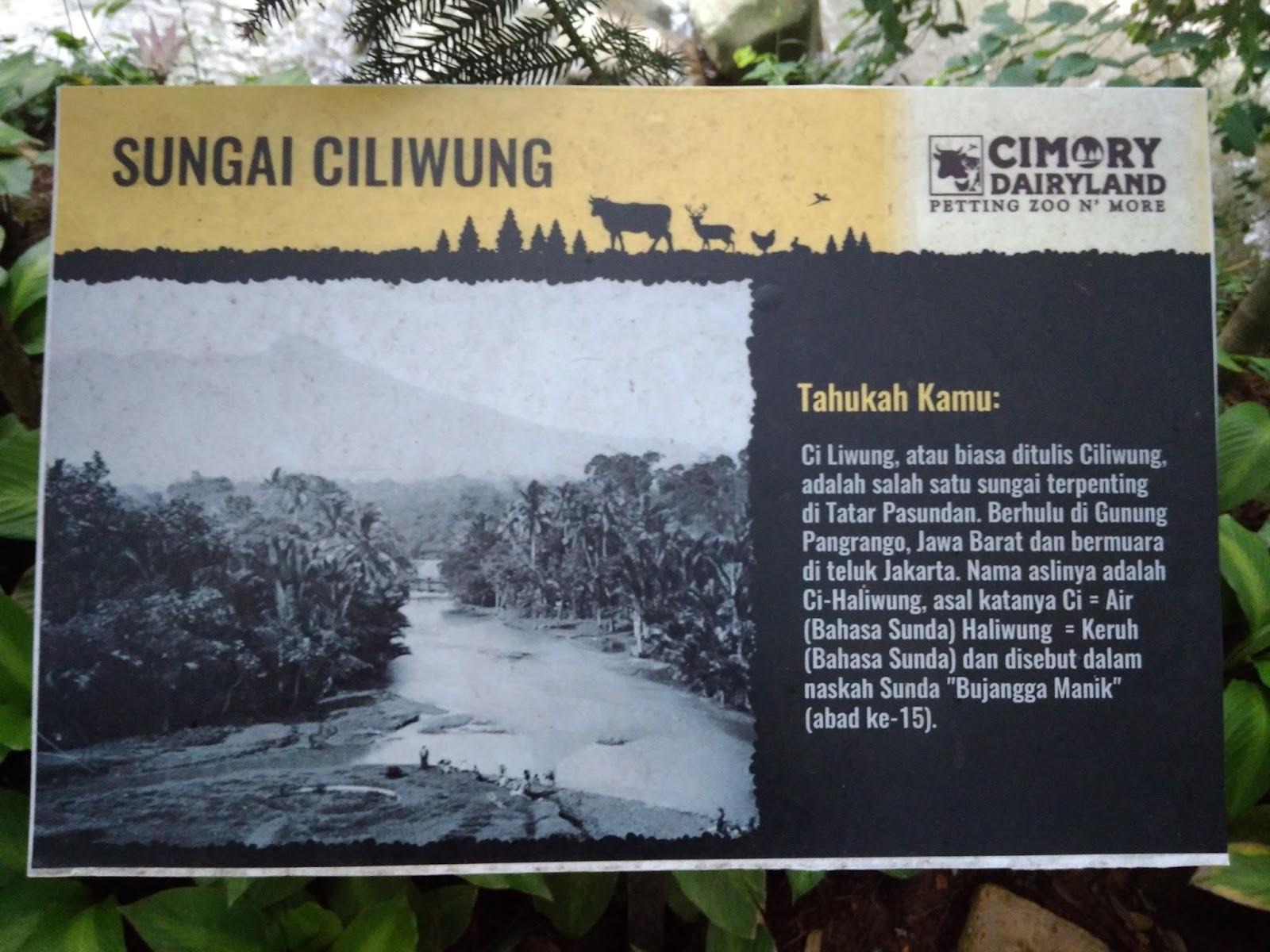 Cimory River Side Bogor Wisata Stevenly Jembatan Menuju Seberang Sungai