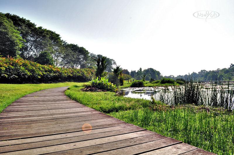 Danau Dora Ecology Park Cibinong Science Center Csc Justu7uh Kab