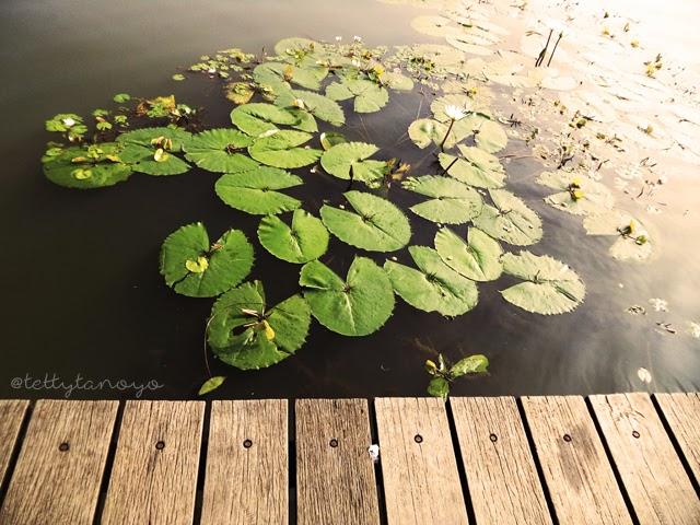 Ecopark Cibinong Science Centre Tettytanoyo Indonesian Danau Dora Kab Bogor