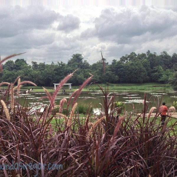 Taman Kota 3 Ecology Park Danau Dora Cibinong Berbagi Kisahku