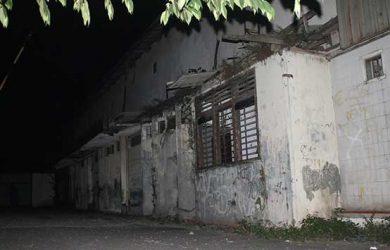 Bukan Kebun Raya Obyek Wisata Bogor Ternyata 8216 8217 Hutan