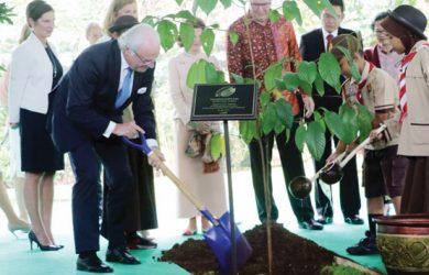 Raja Ratu Swedia Tanam Pohon Kawasan Cifor Bogor Pojokbogor Hutan