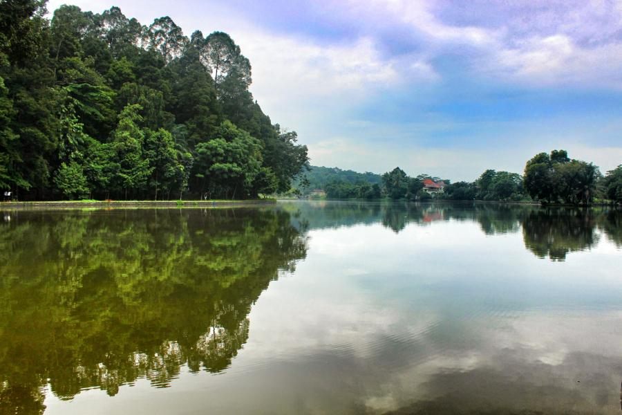 Rumah Dijual Premium Strategis Asri Cifor Bogor Wpid Hutan Kab