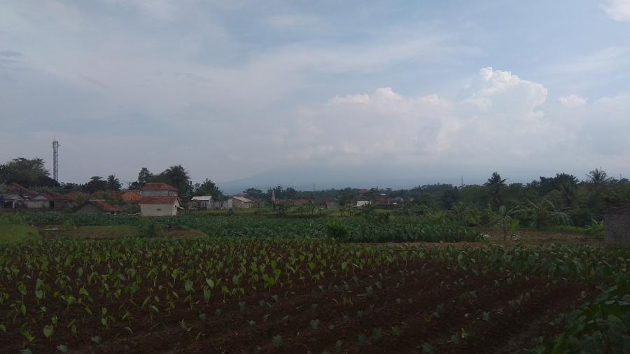 Tanah Dijual Kavling Siap Bnagun Abdi Garden Cifor Lokasi Kota