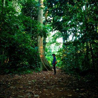 Visitbogor Instagram Tagged Deskgram Anak Muda Jalan Keluar Menikmati Alam