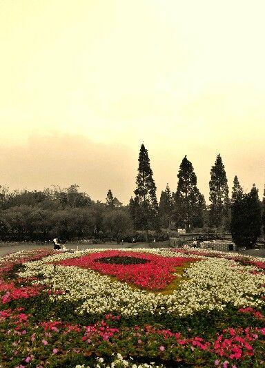 66 Indonesia Images Pinterest Bogor Viajes Taman Bunga Nusantara Fly