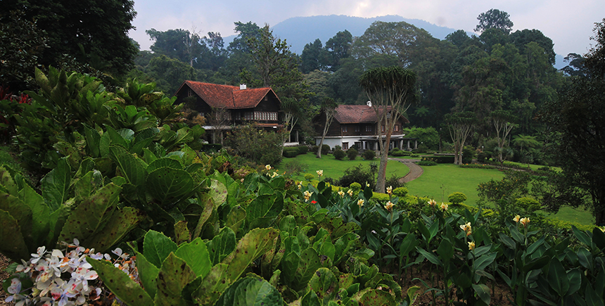 Exploring Great Outdoors Bogor Indonesia Waytogo Botanical Gardens Fly Paragliding