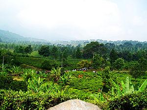 Garut Regency Wikivisually Bogor Indonesia Fly Paragliding Kab