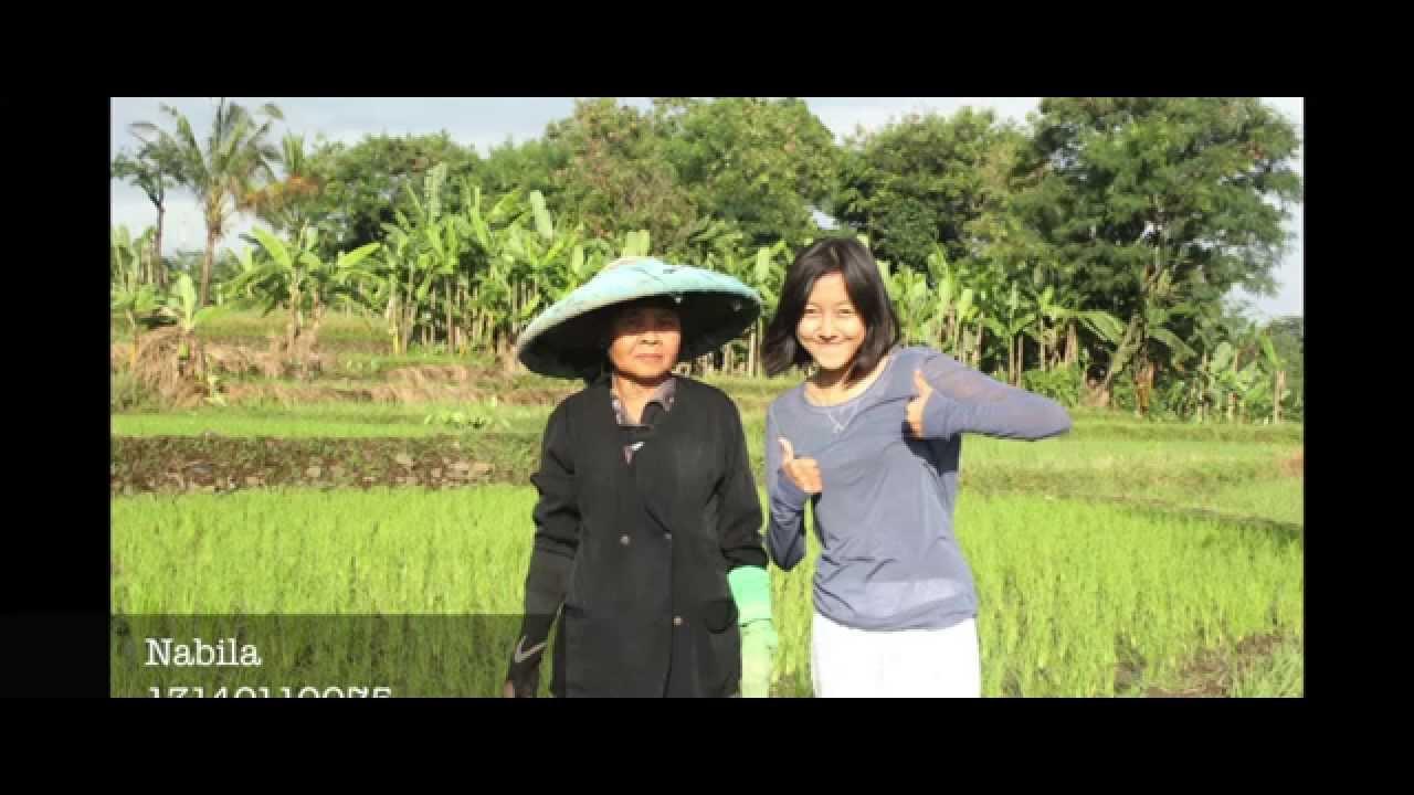 Pesona Kampung Budaya Sindang Barang Youtube Sindangbarang Kab Bogor