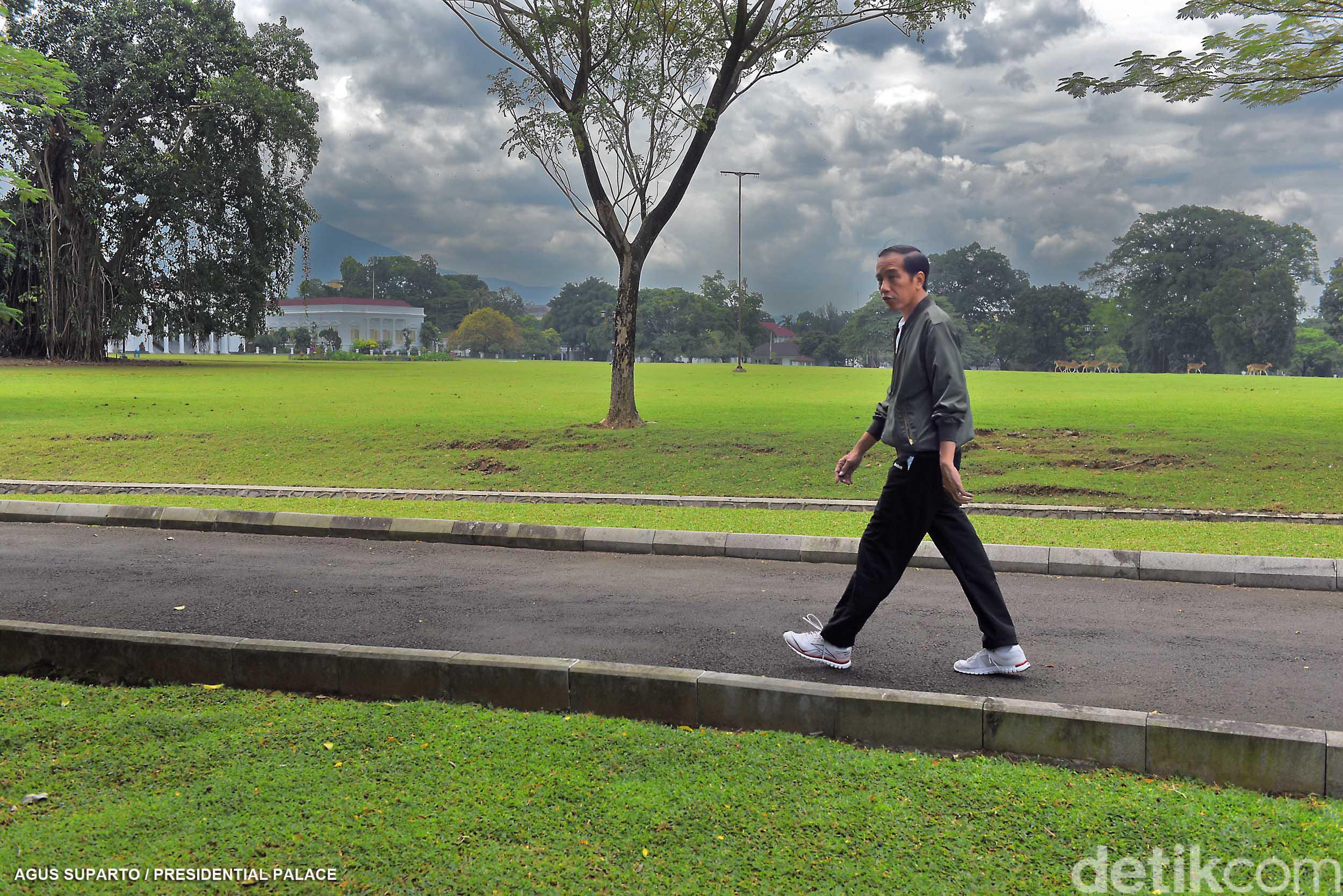 Awali 2017 Jogging Kebun Raya Bogor Jokowi Kab