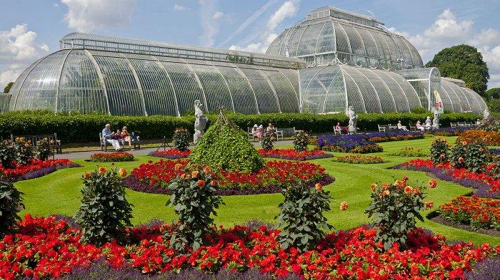 Bangga Kebun Raya Bogor Masuk Daftar Tua Dunia Lihat Kab