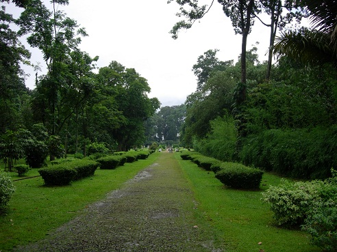 Kebun Raya Bogor Asri Menyimpan Berbagai Catatan Bogor2 Sejarah Hingga