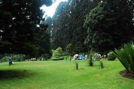 Kebun Raya Cibodas Dinas Pariwisata Kebudayaan Provinsi Jawa Barat Bogor