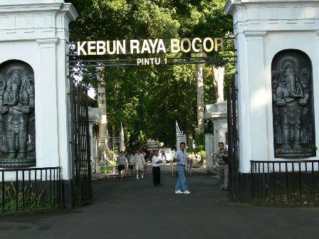 Kebun Raya Indonesia Alamendah Blog Bogor Kab