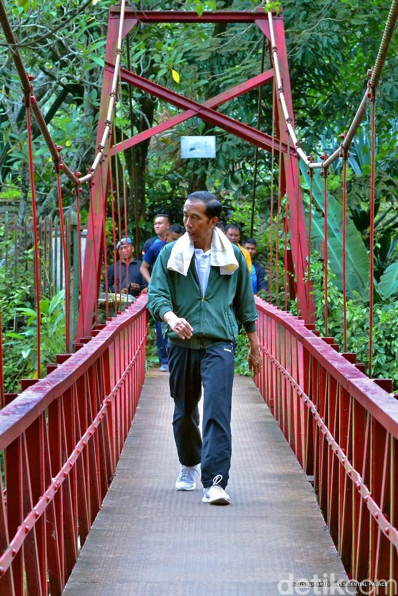 Presiden Jokowi Jogging Kebun Raya Bogor Detik Peristiwa 2017 Berkeliling
