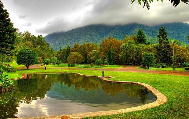 Rekomendasi Tempat Wisata Bogor Wajib Dikunjungi Indonesia Kebun Raya Cibodas