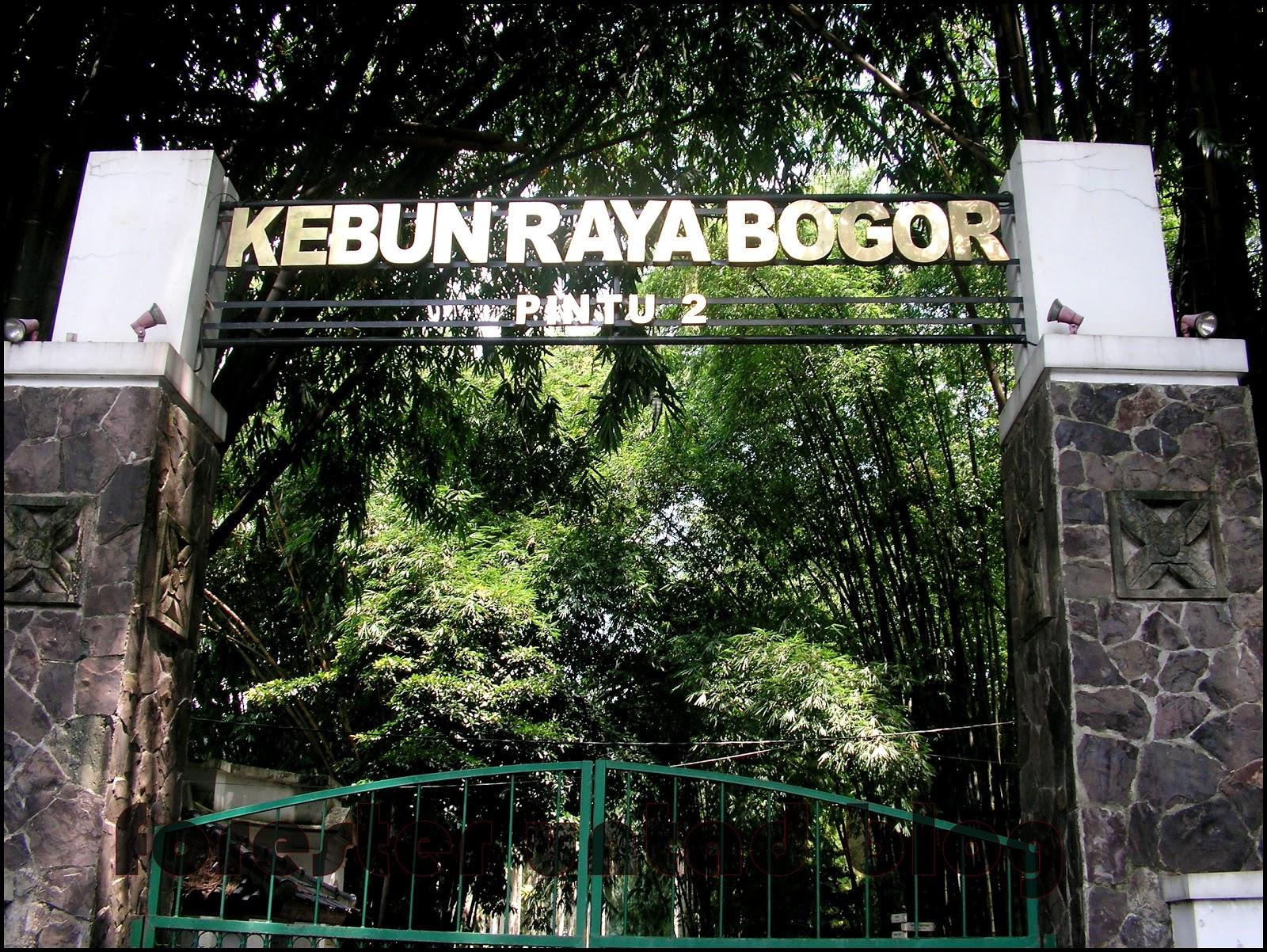 Sejarah Kebun Raya Bogor Forester Untad Blog Kab