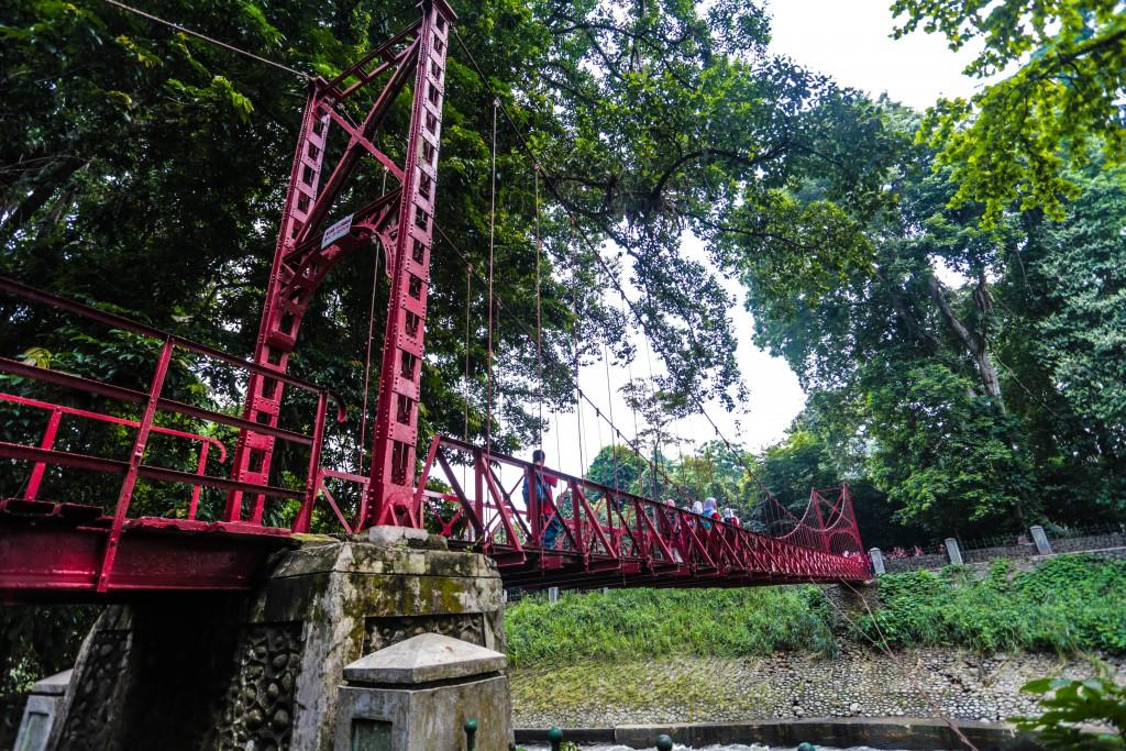 West Java Inckebun Raya Bogor Kebun Kota 50 Kab
