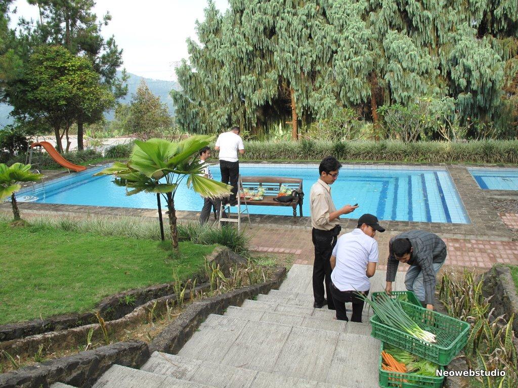 Belajar Berkebun Yuk Vacationguide Pasirmukti Tepatnya Berada Jalan Raya Tajur