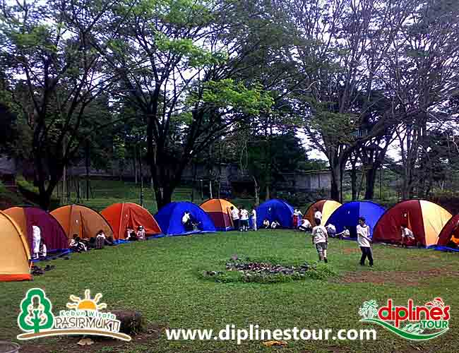 Diplines Tour Tourism Catalogue Referensi Wisata Panduan Camping Kebun Pasirmukti