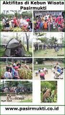 Sewa Mobil Bogor Kebun Wisata Pasir Mukti Murah Pasirmukti Kab