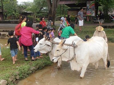 Tk Tarakanita 5 Jakarta Kbtk Berkunjung Kebun Kb Wisata Pasir