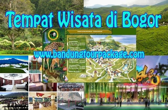 Daftar 85 Tempat Wisata Bogor Sekitarnya Yoshi Tour Kolam Renang